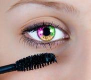 Barwiony oko Zdjęcie Royalty Free