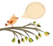 Barwiony ptaka i mowy bąbel Zdjęcie Stock