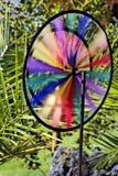 barwiony wiatraczek Obraz Royalty Free
