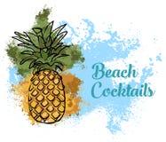 barwniki ilustracji obrazu ananasa wody Zdjęcie Royalty Free