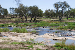 Barwon River in Australia Royalty Free Stock Image