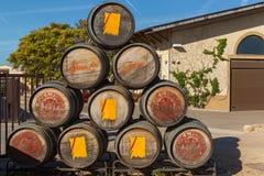 Baryłki dla wino fermentaci Obraz Stock
