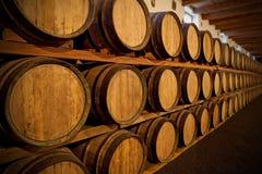 baryłki wino Obraz Stock
