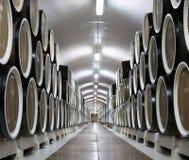 Baryłki wino w lochu wytwórnia win Massandra Zdjęcie Royalty Free