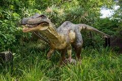 Baryonyx стоя в высокорослой модели дисплея травы в зоопарке Перта Стоковая Фотография