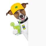 Barzil pies obraz stock