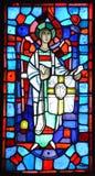 Basílica de janelas de vitral do Notre-Dama-du-tampão Imagens de Stock Royalty Free