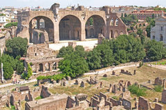 Basílica de Maxentius Fotografia de Stock Royalty Free