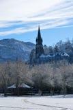Basílica del rosario de Lourdes Foto de archivo libre de regalías