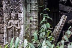 Bas-ανακούφιση στο ναό TA Prohm, Καμπότζη Στοκ εικόνες με δικαίωμα ελεύθερης χρήσης
