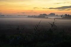 Bas brouillard au-dessus de la campagne néerlandaise un matin d'automne photographie stock