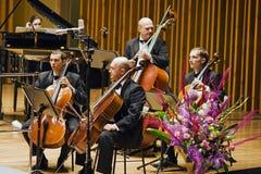 bas- kammareorkesteravsnitt Arkivfoto