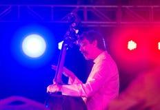Bas- musiker Ritt Henn som utför i Indien royaltyfri fotografi