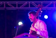 Bas- musiker Ritt Henn som utför i Indien arkivbilder