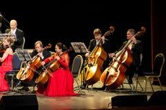 Bas partijorkest royalty-vrije stock foto's