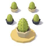 Bas poly cactus de vecteur Photographie stock