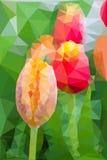 Bas poly style triangulaire de tulipe Photographie stock