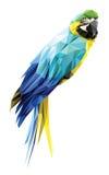 Bas polygone d'ara bleu et jaune d'isolement sur le fond blanc, dessin géométrique moderne d'oiseau coloré de perroquet Photo libre de droits