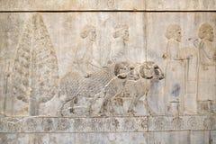 A bas-relief of ancient Syrians at Apadana, Persepolis. Shiraz, Iran. stock photos