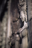 Bas-relief- Angkor Wat, Cambodge Images stock