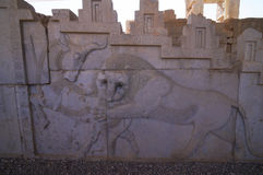Bas-relief of a bull and a lion at the ruins of Persepolis  in S Stock Photos