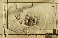 Bas relief of a bull and a lion at the ruins of Persepolis in Shiraz, Iran. Royalty Free Stock Photo