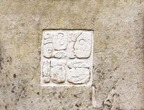 Bas-relief carving with Mayan inscription, Palenque, Chiapas, Me Stock Photo