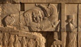 Bas Relief do leão e da luta de Bull ao lado de um soldado do Achaemenid em Persepolis Foto de Stock