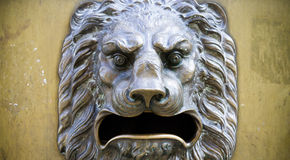 Bas-relief of a head of a lion Stock Photo