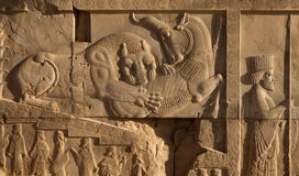 Bas Relief of Lion and Bull Fighting Beside an Achaemenid Soldier in Persepolis. Bas relief carving of a lion hunting a bull beside an embossed soldier on one of Stock Photo