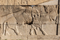Bas-relief of persepolis ruins�Shiraz IRan Stock Images
