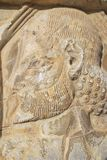 Bas-relief at the ruins of Persepolis in Shiraz, Iran. Royalty Free Stock Images