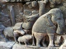 Bas Relief som visar den olika etappen av livet av Lord Buddha in mot nirvana, Borobudur tempel, centrala Java, Indonesien Royaltyfria Bilder