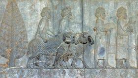 Bas-reliefs antichi di Persepolis, Iran fotografie stock libere da diritti