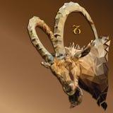 Bas signe polygonal de zodiaque de Capricorne illustration de vecteur