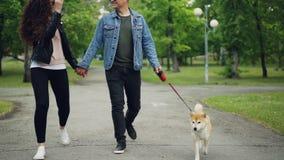 Bas tir de mouvement lent des propriétaires affectueux de chien marchant en parc avec le beau petit chiot appréciant la promenade banque de vidéos