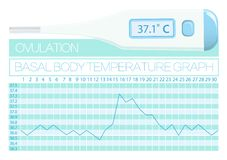 Basal body temperature woman. Natural familly planning. Methods for determining ovulation day. Graph Basal body temperature woman. Natural familly planning Stock Images