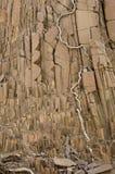 Basalt Stock Images