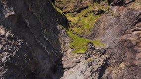 Basalt clif on Reynisfjara beach near Vik, Icealnd.  stock footage