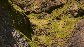 Basalt clif on Reynisfjara beach near Vik, Icealnd.  stock video