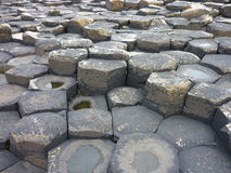 Basalt columns. Of the Giant's Causeway, Northern Ireland royalty free stock images