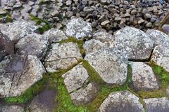 Basalt columns of Giants Causeway. In Ireland Royalty Free Stock Images