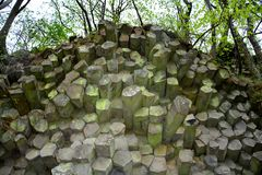 Basalt columns    -   Prism wall   in  Bavaria, Germany. Prism wall - basalt columns in the Rhön, Bavaria, Germany with tree stock photography