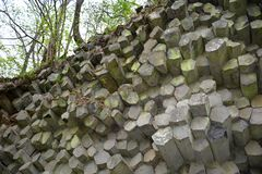 Basalt columns    -   Prism wall   in   Germany. Prism wall - basalt columns in the Rhön, Bavaria, Germany with tree royalty free stock image