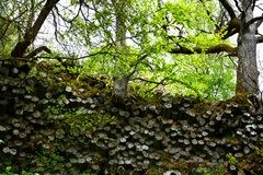 Basalt columns    -   Prism wall   in   Germany. Prism wall - basalt columns in the Rhön, Bavaria, Germany with tree in green nature stock photo