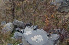 Basalt Stock Photo