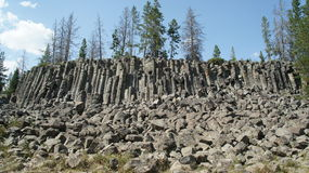 Basalt columns at Sheepeater Cliff Royalty Free Stock Photography