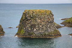 Basalt formations at Arnarstapi Royalty Free Stock Images
