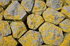Basalt ontmoete korstmos, Basalt met korstmos royalty-vrije stock afbeeldingen