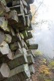 Basalt prisms in the forrest. Basalt prisms in a foggy autumn forrest stock image